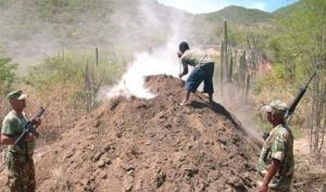 Haiti: Jean-René Colas blessé par balles à la frontière par un soldat dominicain