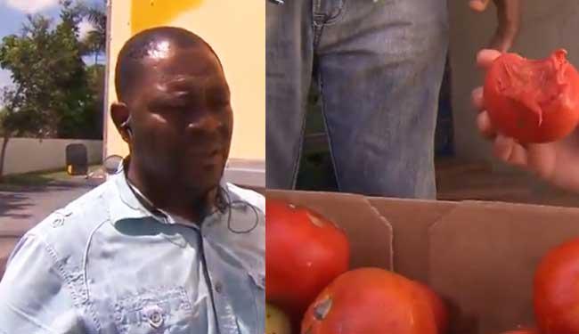 Un restaurant Haitien en Floride a acheté des produits provevant d'une poubelle