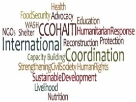 Haiti:  Inquiétude chez 49 ONG internationales pour l'arrêt de certains programmes d'aide