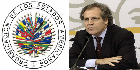 Monde: L'OEA va débloquer environ 18 millions de dollars pour lutter contre la corruption en Haïti