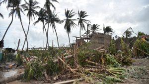 Haiti: Le secteur agricole sévèrement touché suite au passage de l'ouragan Matthew