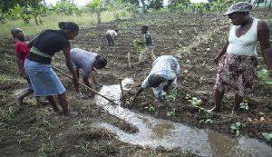 Haiti: Jovenel Moise «Haïti a un grave problème de maîtrise de l'eau et de la gestion de l'eau de surface»