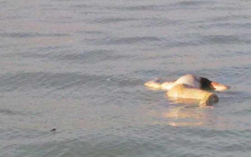 Un homme retrouvé noyé sur mer à Lamentin 54