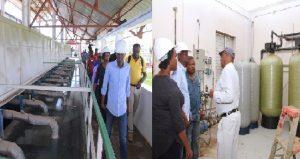 Haiti: Jovenel Moise au chevet du développement agricole et socio-économique des communes