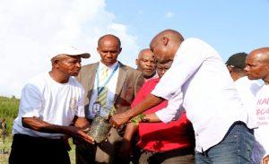 Haiti: Le Président de la République à la cérémonie de relance de la culture du raisin