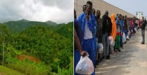 Haïti : De pays essentiellement agricole à pays de potentiels immigrés, essentiellement