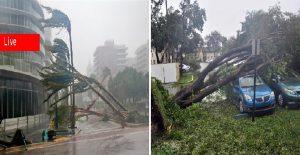 Monde: L'ouragan Irma balaye la Floride, Trump déclare l'état de catastrophe naturelle