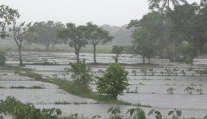 Ouragan-Irma