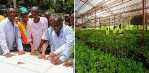 Haiti: Inauguration du Centre de Germoplasme Forestier et Fruitier de la Grand'Anse