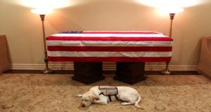Monde: Le chien de l'ex-président américain George H. W. Bush au pied de son cercueil