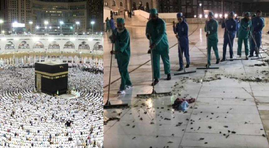 Monde: Des dizaines de milliers de sauterelles envahissent La Mecque
