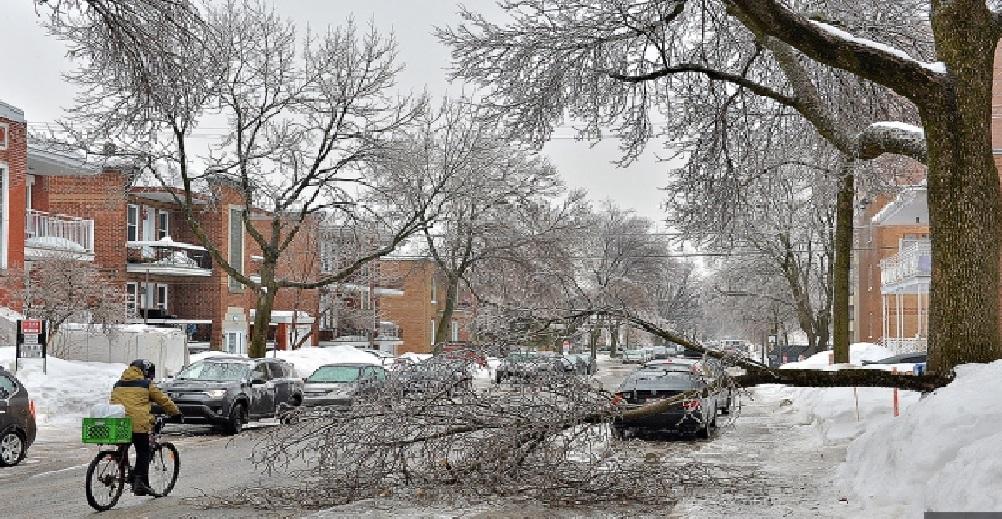 Monde: 312 000 foyers au Québec sans électricité à cause du verglas