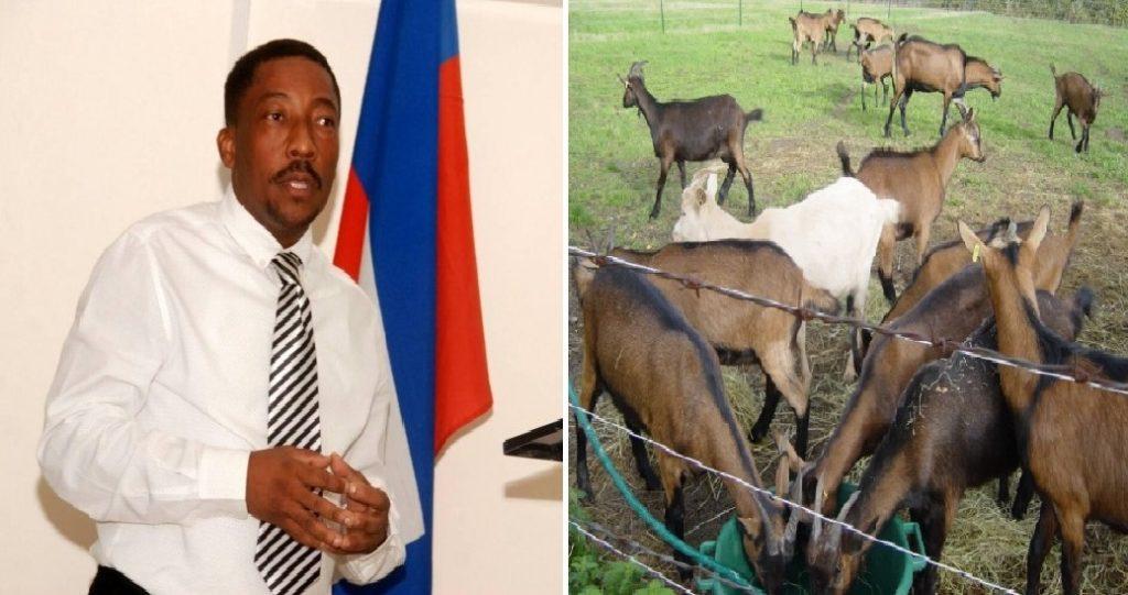 Haiti: Le  porte-parole du Premier ministre, Fritz William Michel, donne des explications sur l'affaire des cabris