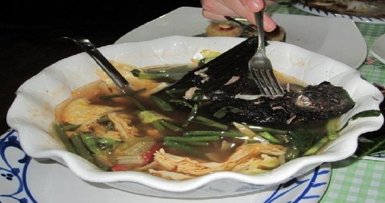 Monde: La soupe aux chauve-souris soupçonnée d'être à l'origine de l'épidémie du Coronavirus
