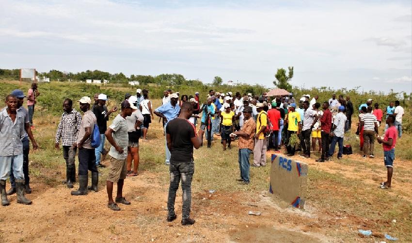 Haïti: De nombreux cultivateurs perdent leurs récoltes à cause des gangs armés