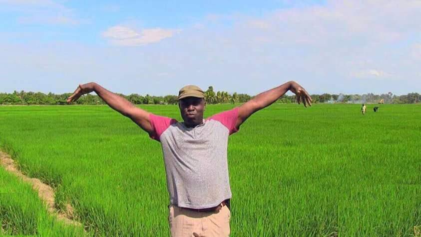 Haïti: La ferme agricole de Jacques Sauveur Jean saccagée par des individus non identifiés